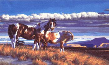 WILD HORSES AT DUSK PBN (dms91104) Dimensions Art & Craft ...